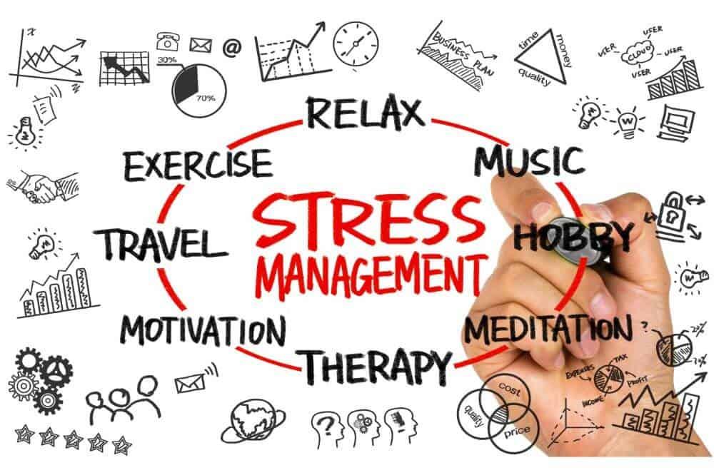 Stress Mindset